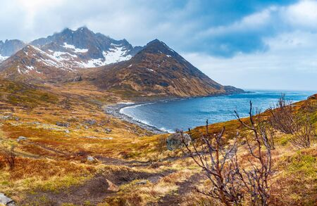 The landscape view of Senja Island near Mefjordvaer in Norway 免版税图像