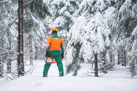 a woodcutter at work in the wintry forest Stock Photo