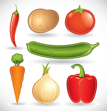 raw potato: Vector set of various vegetables on a white background - set 1 Illustration