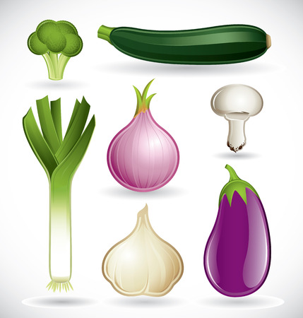 zapallo italiano: Conjunto de vectores de varias verduras sobre un fondo blanco - conjunto 2 Vectores