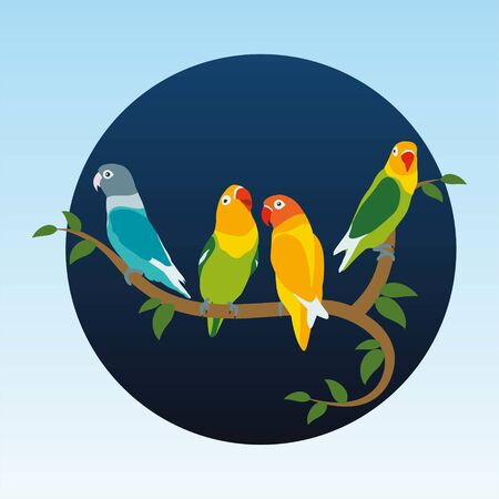 Various Lovebird blue background Illustration