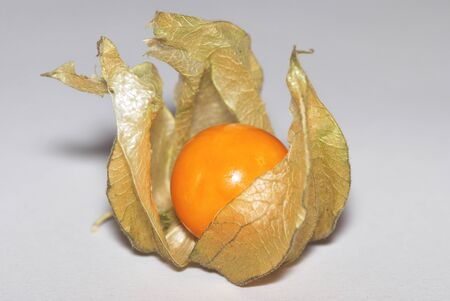 great view of a ripe sweet physalis photo