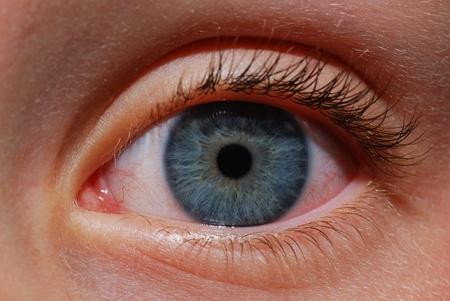 Blue Eye Detail mit Wimpern und iris Standard-Bild - 10607630