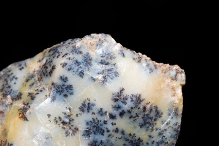 smooth edged rock mineral with old plant inclusions photo
