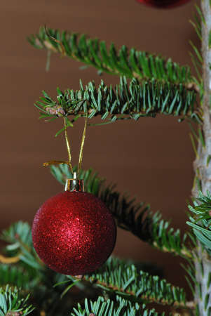 beautiful red ball on Christmas tree decoration in winter photo