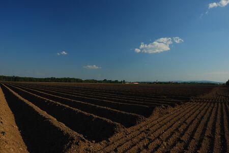 well plowed farmland with dark earth and blue sky Stock Photo - 14871118