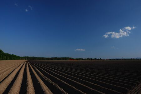 well plowed farmland with straight lines and train with blue sky Stock Photo - 14871117