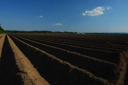 well plowed farmland with dark earth and a little blue sky Stock Photo - 14871114