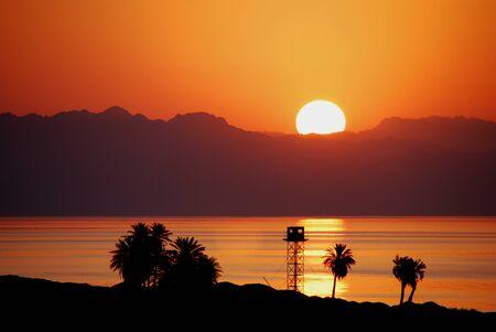Sunrise on The Beach With Palm Trees Sunrise on The Beach With Palm