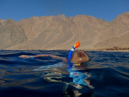 snorkeling in the red sea with mountains in the background Stock Photo