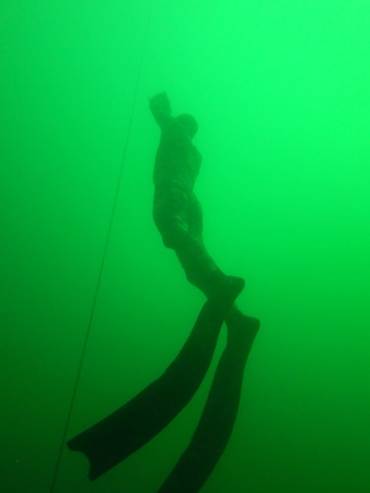 free diver: apnea diver or free diver with long fins in the sea