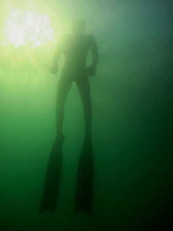 free diver: apnea diver or free diver appearing against the sun