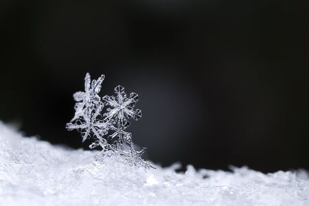beautiful snow crystals on black background in winter Stock Photo
