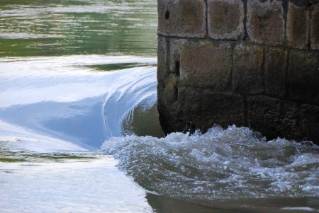 vertebrate: vertebrate water on a wall at a bridge river