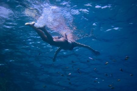 freediving: young woman in bikini swimming in the sea