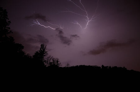 widely: widely branched lightning in a dark forest