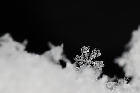 snow crystal: nice big clear snow crystal with black background Stock Photo