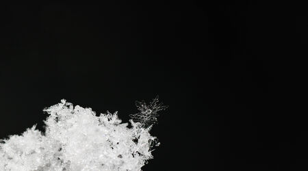 snow crystal: beautiful single snow crystal in fresh snow panorama
