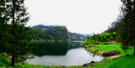 spring green: lake and trees panorama view