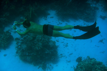 free diving: free diving and photographing the reef in red sea Stock Photo