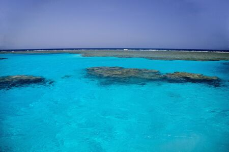 seawater: colorful coral reef and crystal clear seawater
