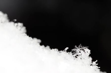 many branches: single small snow crystal with many branches with black background