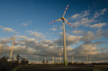 pinwheels: many pinwheels beautiful sky in the nature