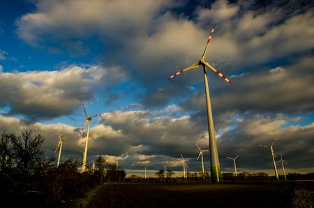 pinwheels: many pinwheels and dark clouds at the sky