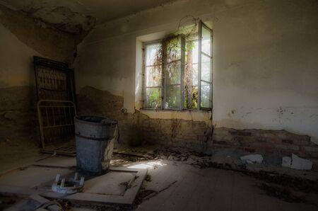abandoned room: abandoned room with overgrown window