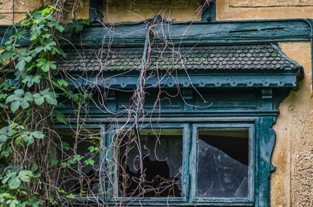 going places: old overgrown villa detail view