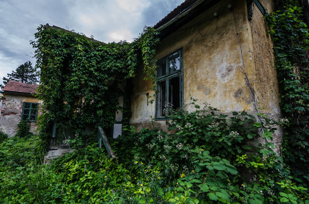 overgrown: overgrown old house with garden
