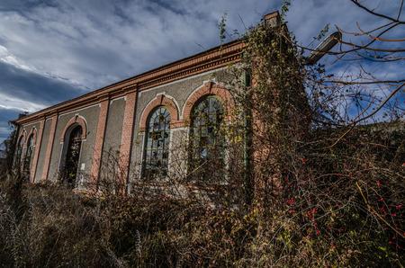 uninhabited: overgrown old building with bricks