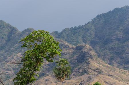 Baum und Berg auf Bali Indonesien Standard-Bild - 78389441