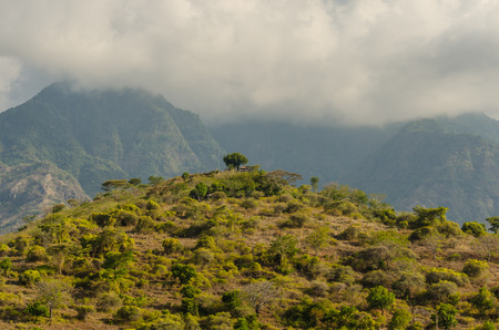 mountain with trees and temple in Bali Indonesia Stock Photo