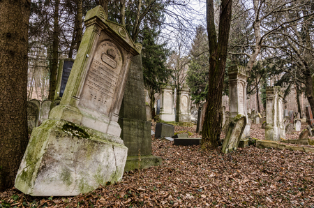 abandoned old forest cemetery with many gravestones