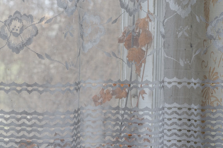 curtain with dried up plants in a house Imagens