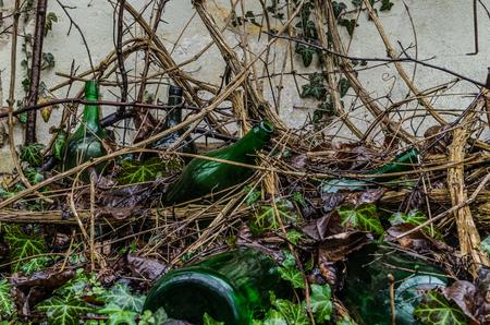 old overgrown wine bottles Stok Fotoğraf