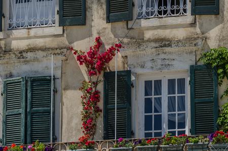 flowers on old villa in Corfu in summer Stock Photo