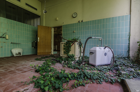 room with plants in abandoned rehabilitation center