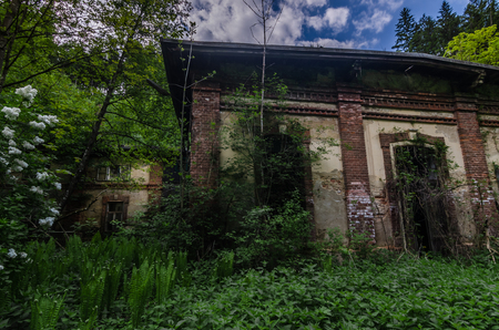 overgrown factory with buildings in a forest Stock Photo