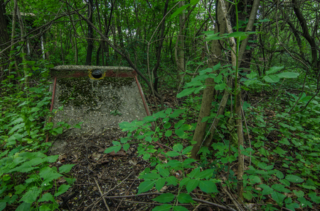 old minigolf course in the woods