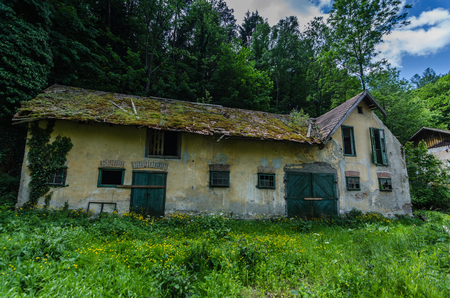 abandoned old house in the forest with moss