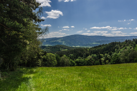 Green landscape with mountains in spring