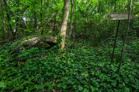 abandoned mini golf course in the woods