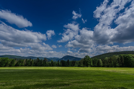 green nature landscape with white clouds
