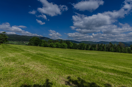 cut meadow in the natural landscape