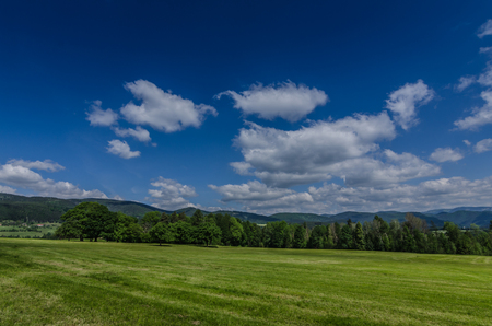 green nature and sky with clouds Stock Photo