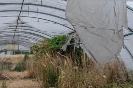 Torn plastic in abandoned gardening