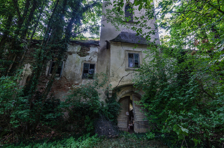 abandoned and fused castle in the forest