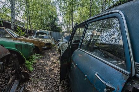 cars on a junkyard detail view